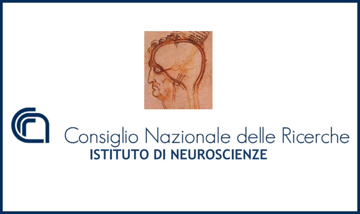 Istituto Neuroscienze CNR: Assegni di ricerca da 19.367 euro a laureati in Biologia, Biotecnologie mediche e Neurobiologia