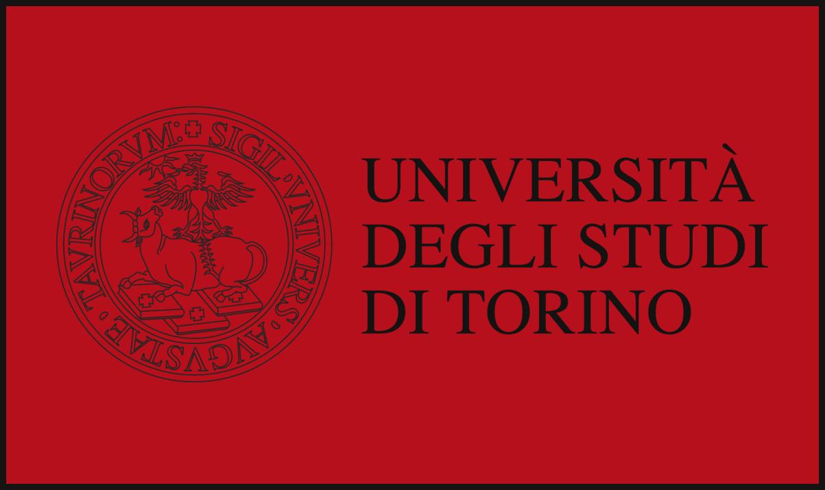 Università di Torino: concorso per 66 Assegni di ricerca in varie discipline