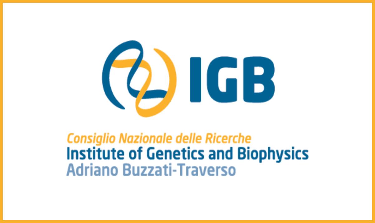 CNR, Istituto di Genetica e Biofisica: Borse di studio per laureati in Biologia a Napoli