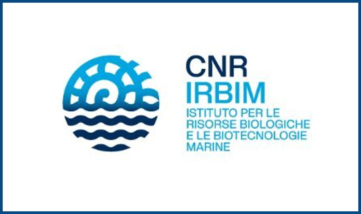 IRBIM CNR: concorsi per 3 Borse di studio per laureati in Filosofia, Antropologia, Storia, Biologia, Matematica, Fisica, Informatica e altre discipline