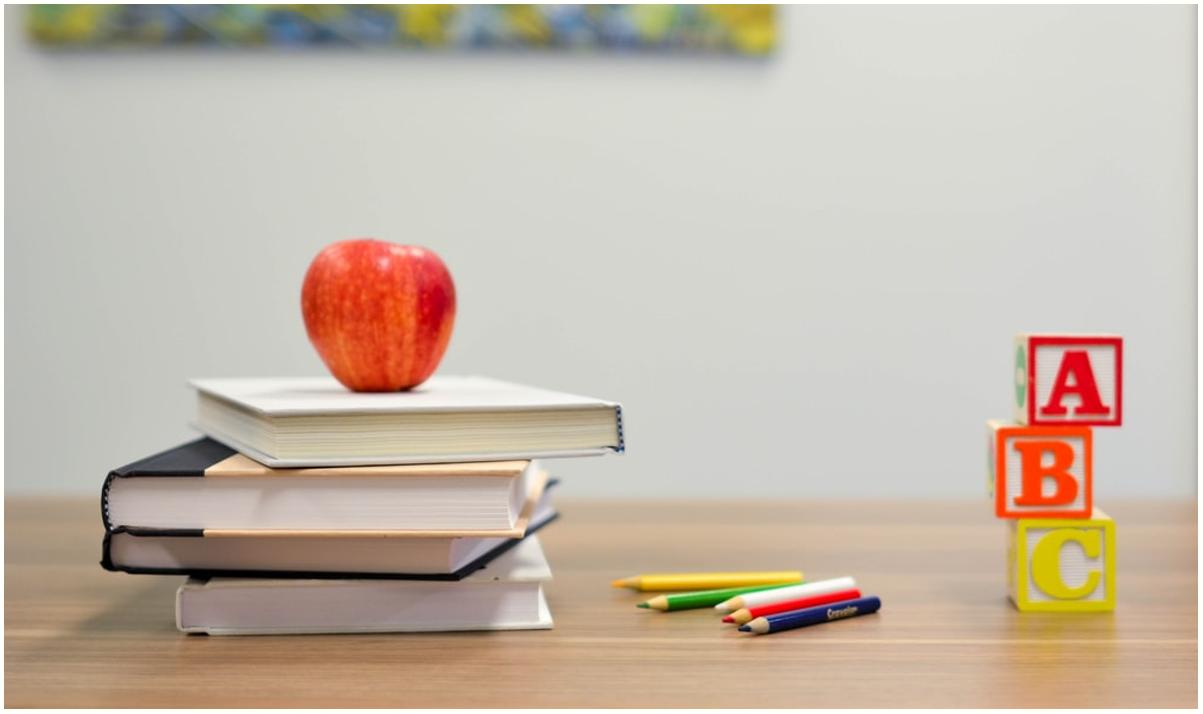 Rosignano, concorso per Educatori di asilo nido a tempo indeterminato