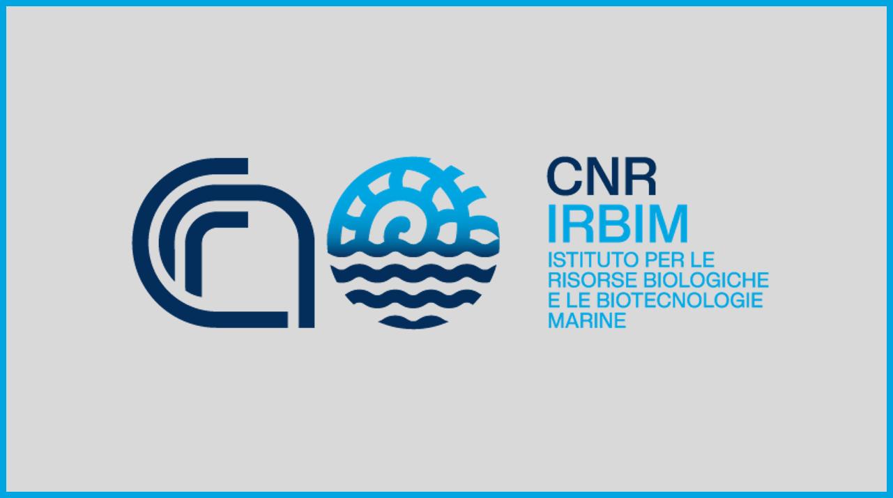 CNR IRBIM: Borse di studio per laureati in Biologia, Scienze ambientali, Economia e altre discipline