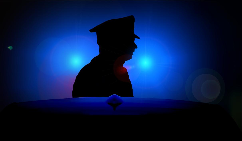 Quali sono e di cosa si occupano le Forze dell'ordine e di sicurezza italiane