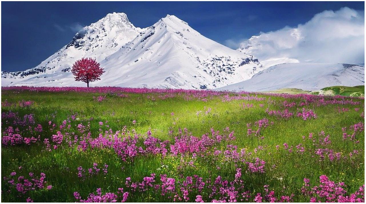 Premio Favaretto per tesi di laurea su uso e tutela dei paesaggi montani