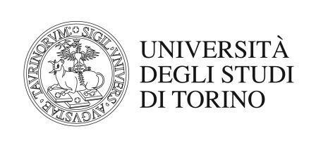 Università di Torino. Bando per 41 Assegni di Ricerca. Anche per Laureati Magistrali