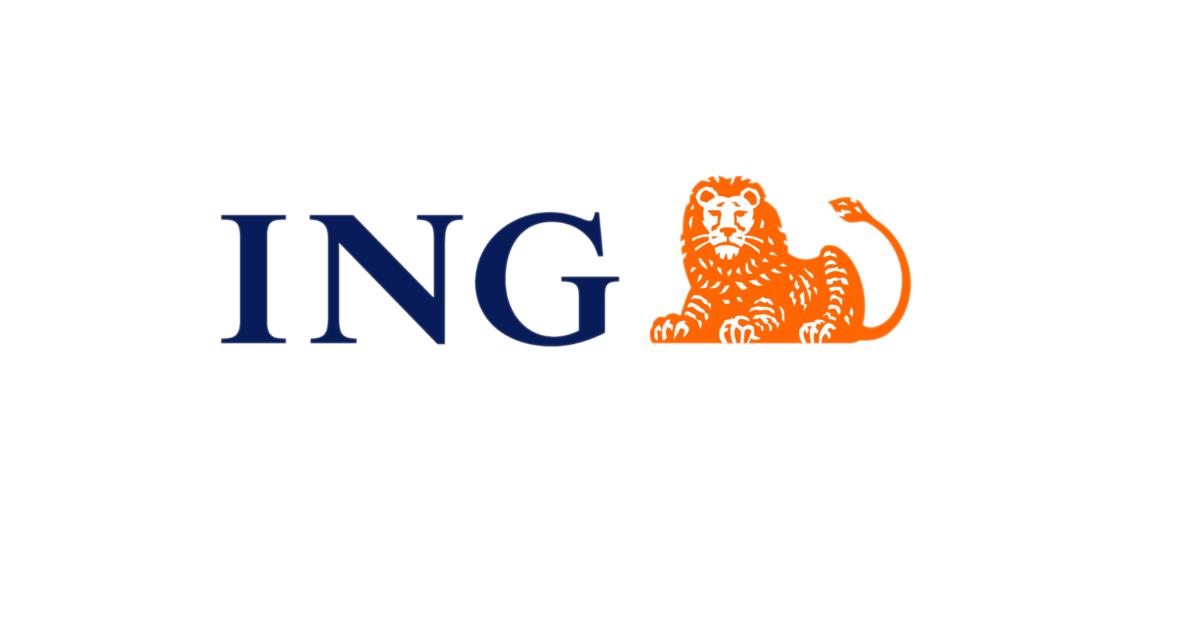ING - Possibilità di impiego