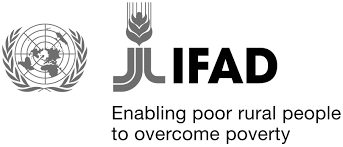 Stage all'estero presso il Fondo Internazionale per lo Sviluppo Agricolo