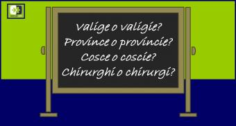 Gli errori più comuni della lingua italiana: singolare e plurale