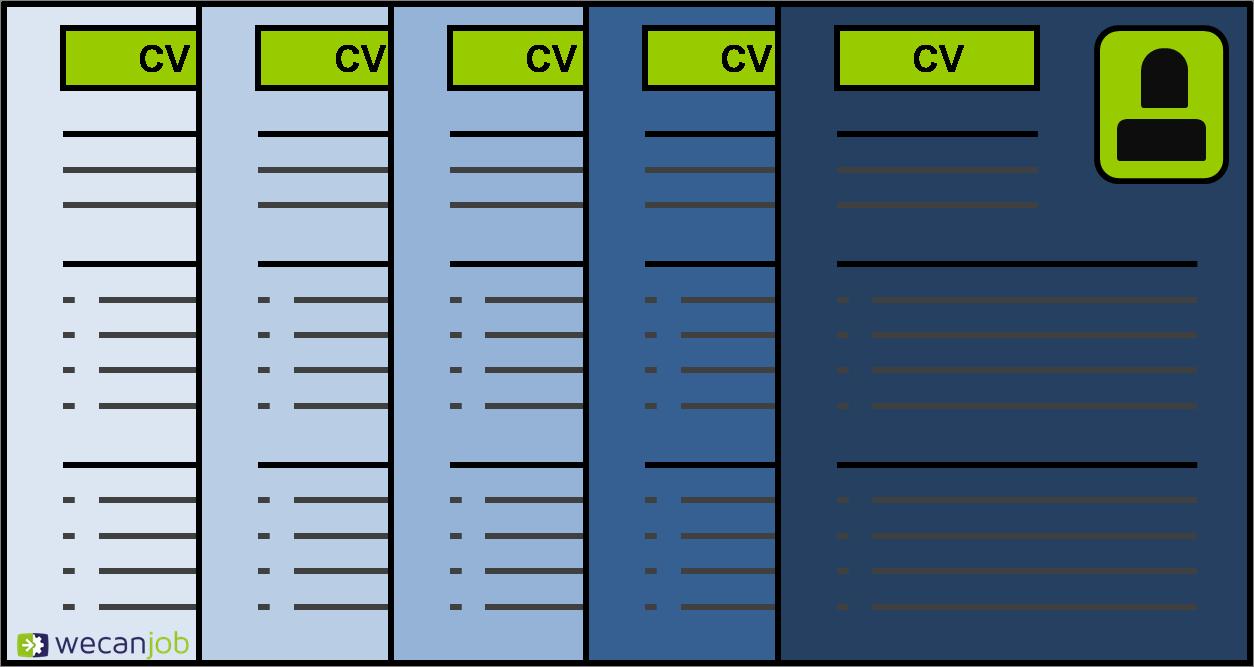 Come compilare il percorso formativo su un curriculum