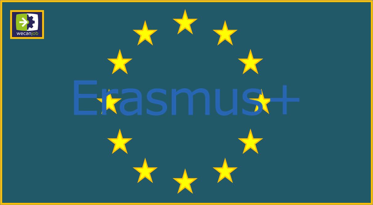 I numeri dell'Erasmus