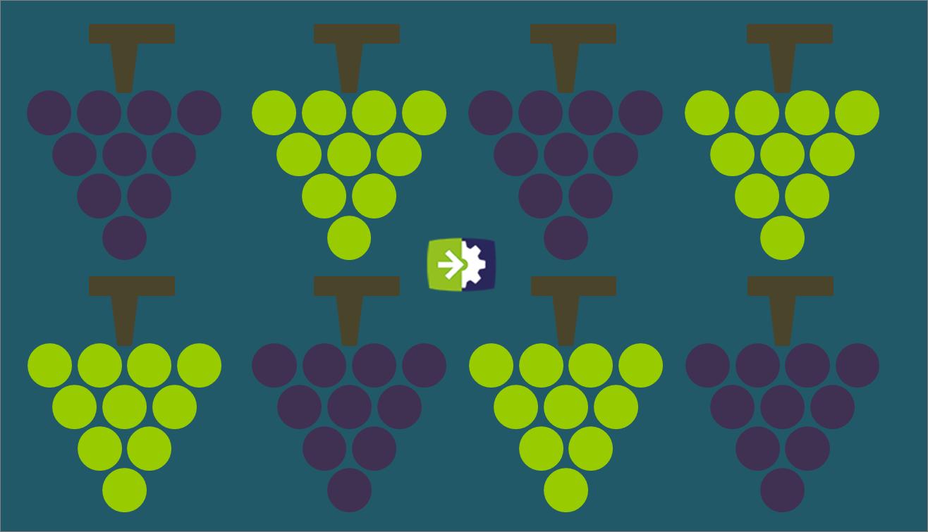 L'economia del vino in Italia