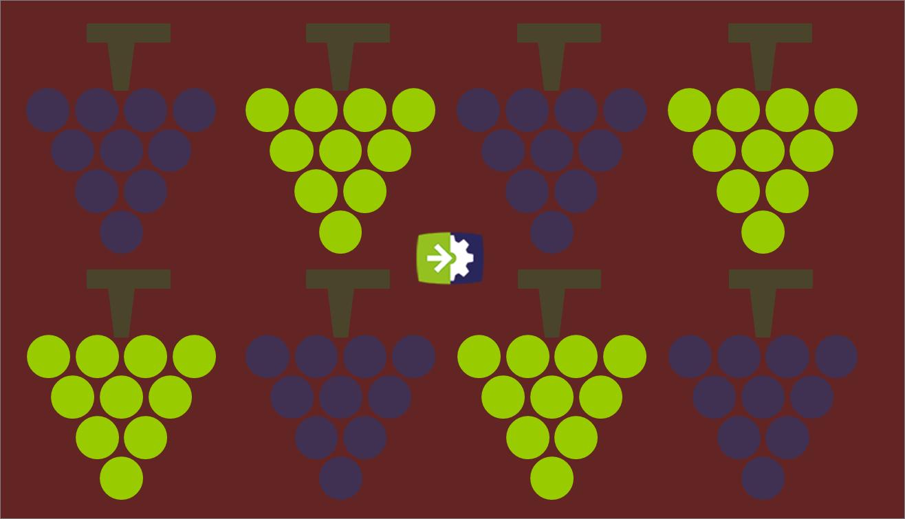 I numeri dell'economia del vino in Italia: produzione ed esportazioni