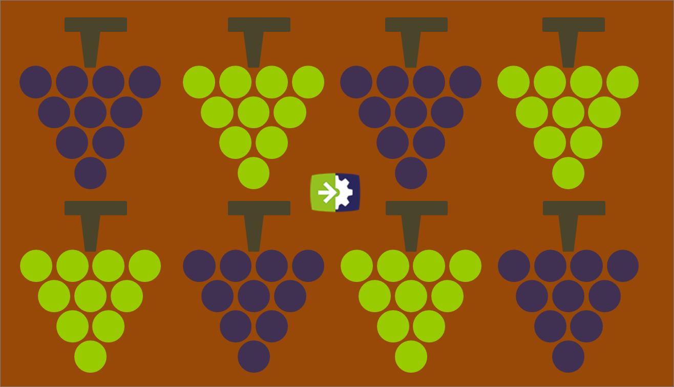 Lavorare nel settore enologico: le professioni del vino