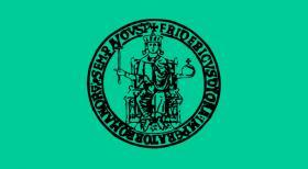 Università Federico II di Napoli - Concorso per 54 ricercatori