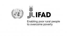 Internship Programme all'IFAD: possibilità di stage retribuiti per neolaureati e studenti