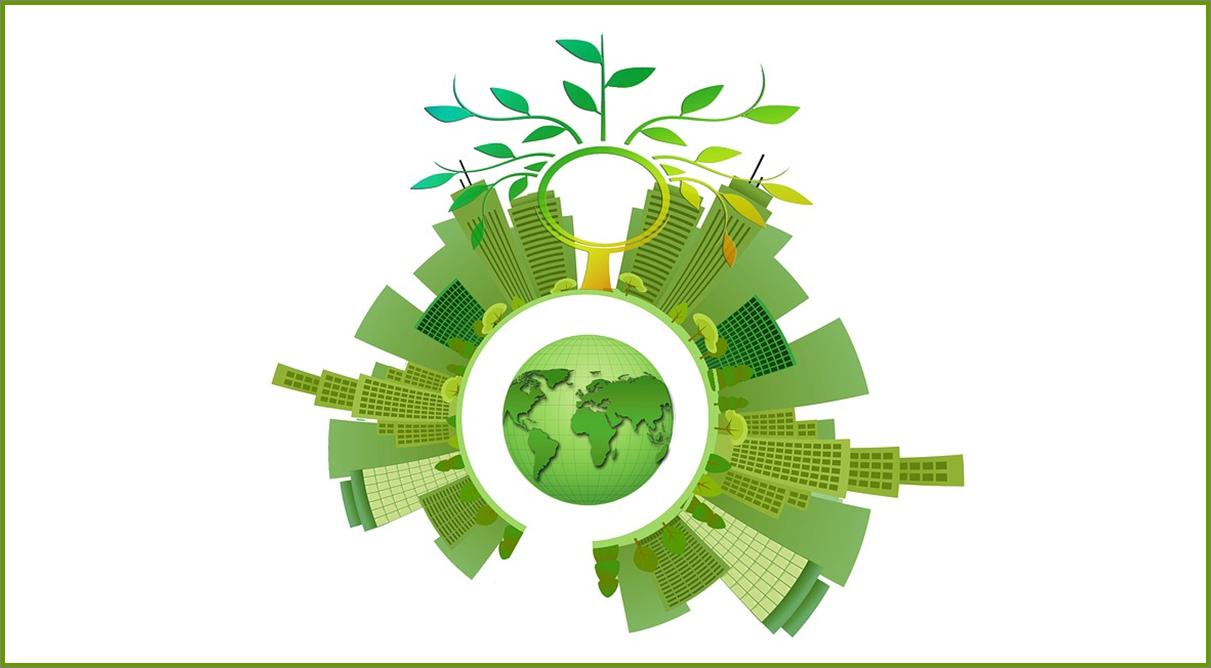 """Fondazione Green: formazione gratuita ITS e IFTS per """"professionisti verdi"""""""
