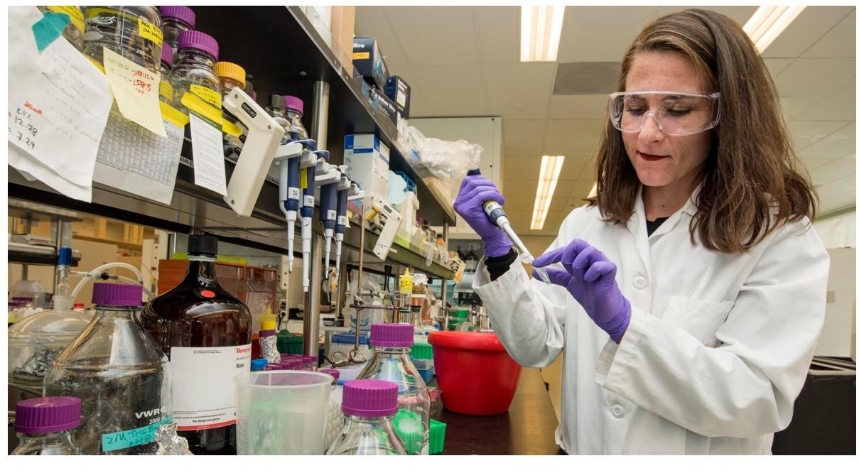 Eurostat: quante sono le donne a lavorare nella scienza e nella tecnologia?